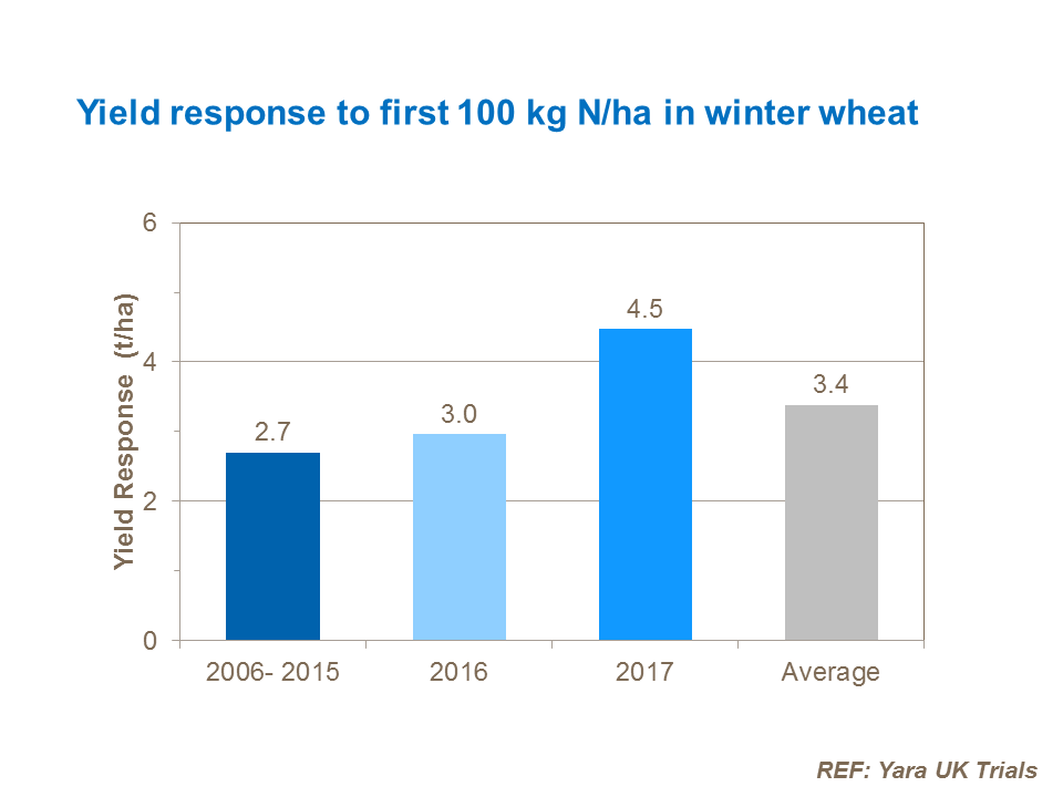 Yield response to first 100 kg N/ha in winter wheat