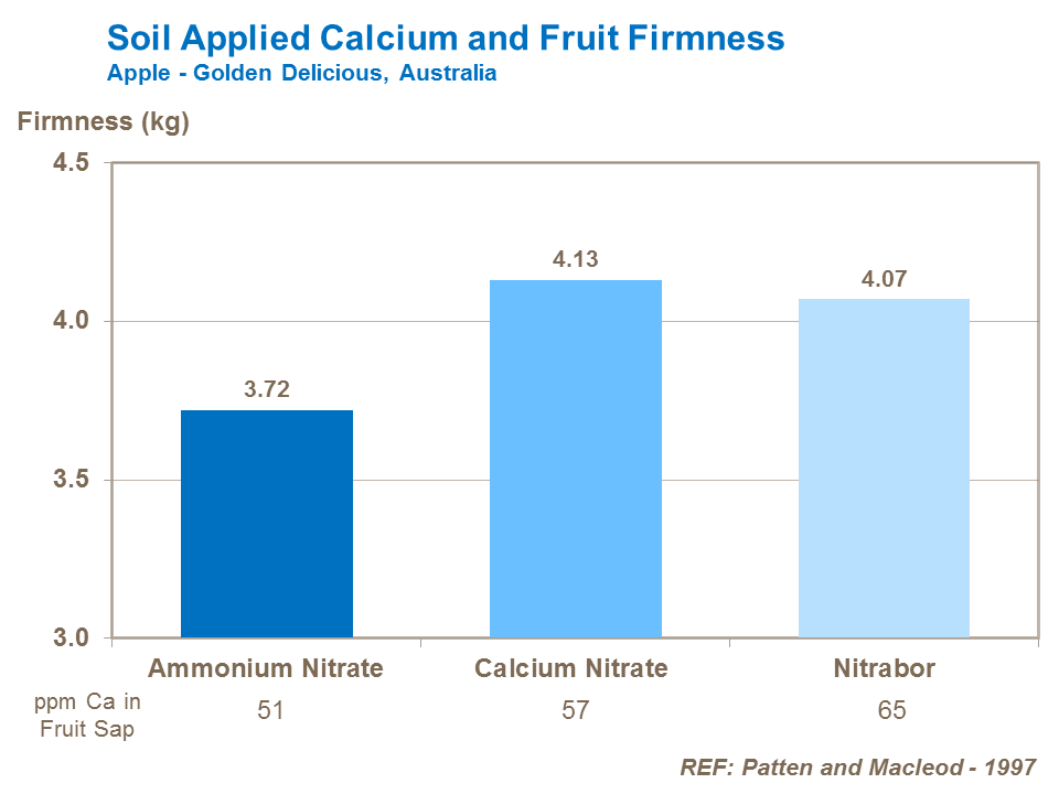 Soil Applied Calcium and Fruit Firmness