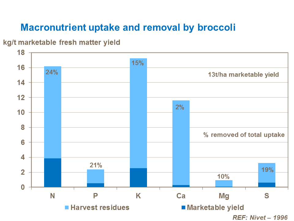 Macronutrient uptake and removal by broccoli