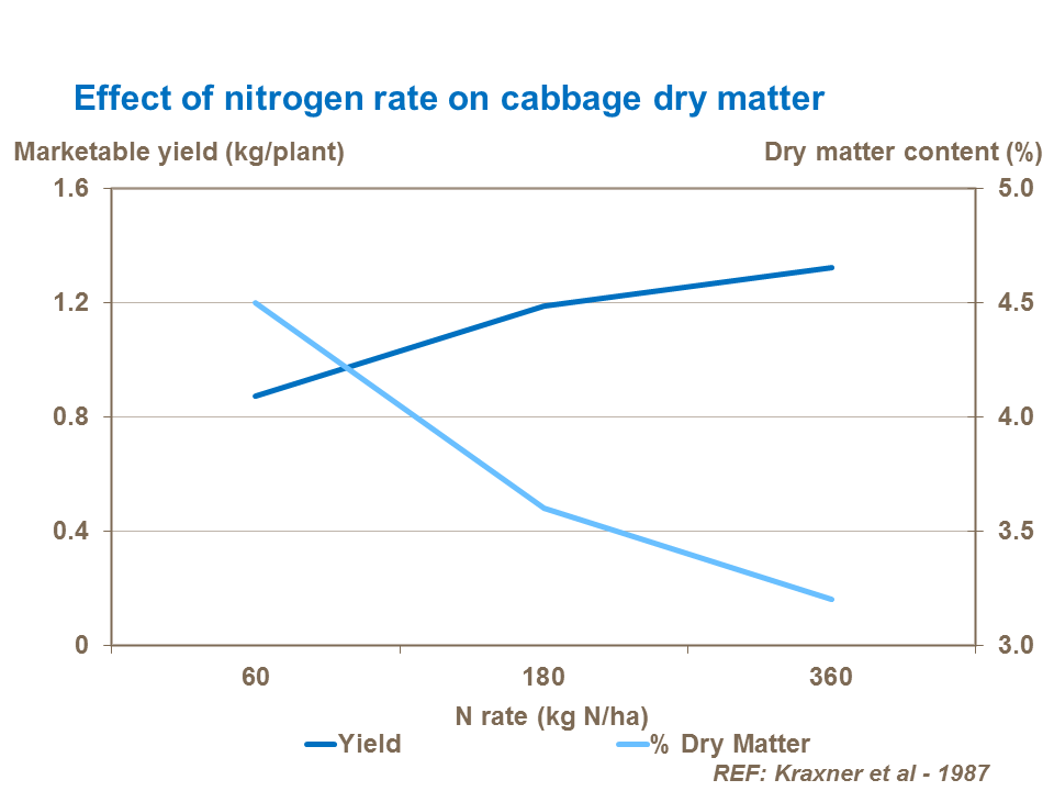 Effect of nitrogen rate on cabbage dry matter