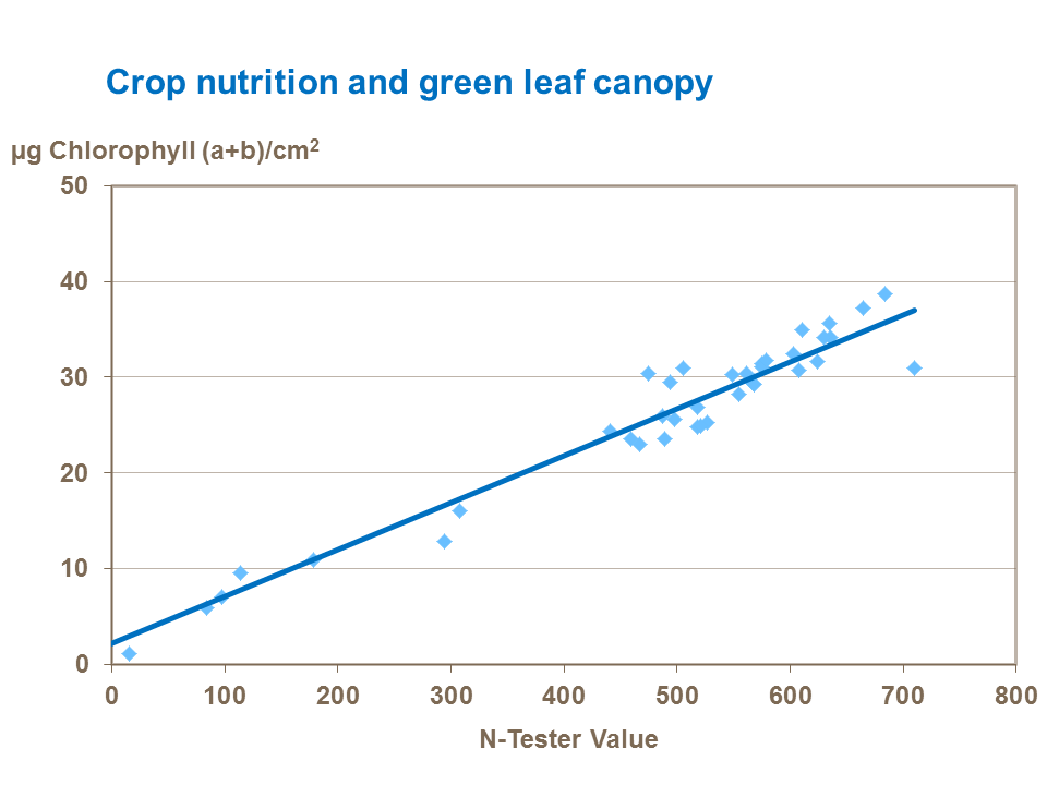 Crop nutrition and green leaf canopy