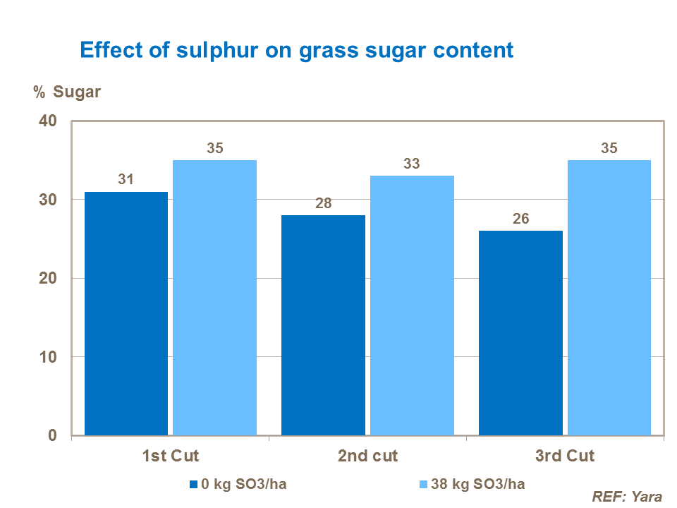 Effect of sulphur on grass sugar content