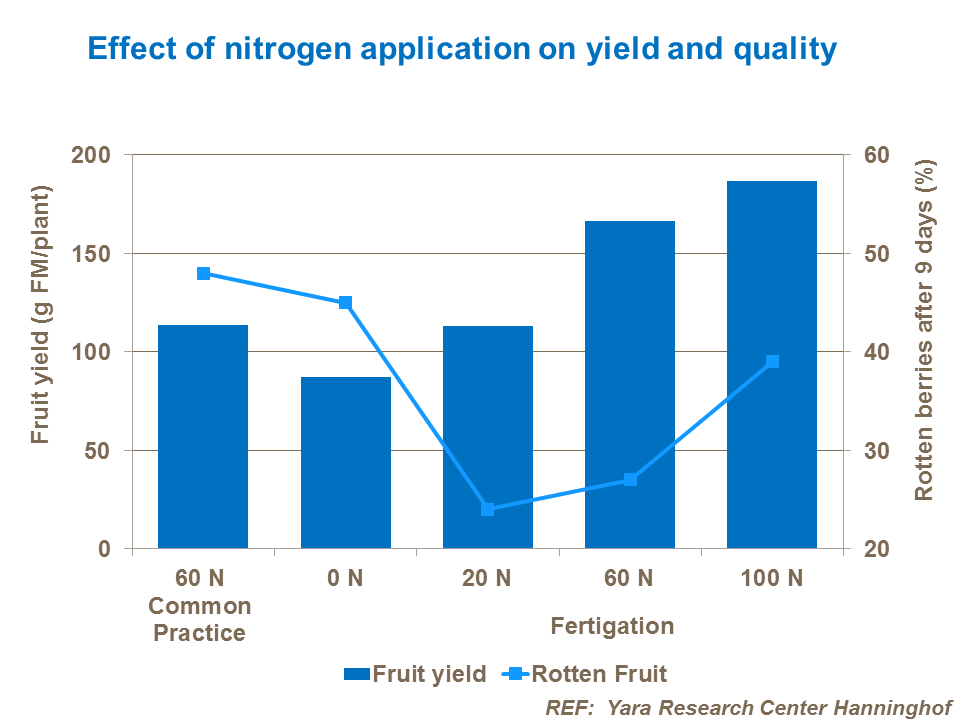 Effect of nitrogen application on yield and quality