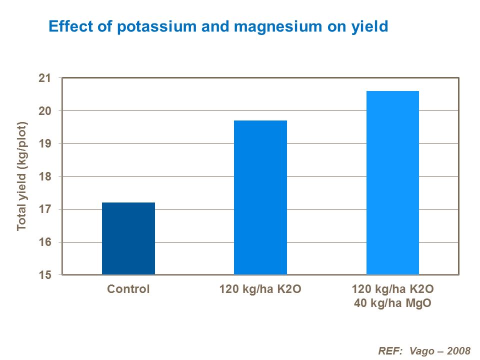 Effect of potassium and magnesium on yield