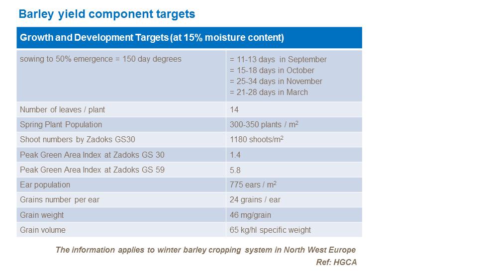 Barley growth and development | Yara UK