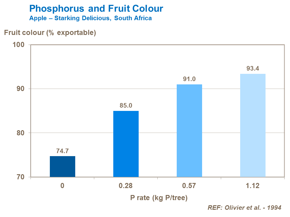 Phosphorus and Fruit Color
