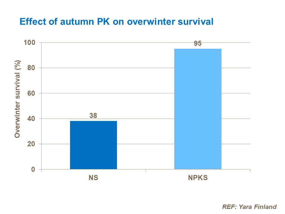 Effect of autumn PK on overwinter survival